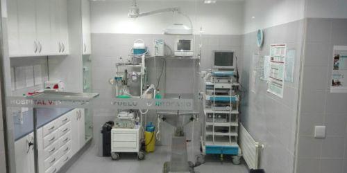Quirófano Veterinario